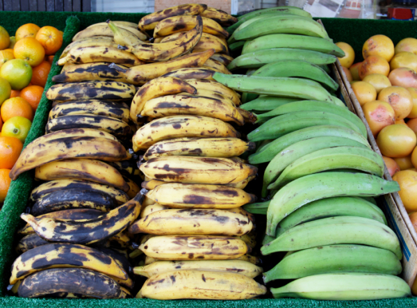 Plantains- The Other Starch of the Americas